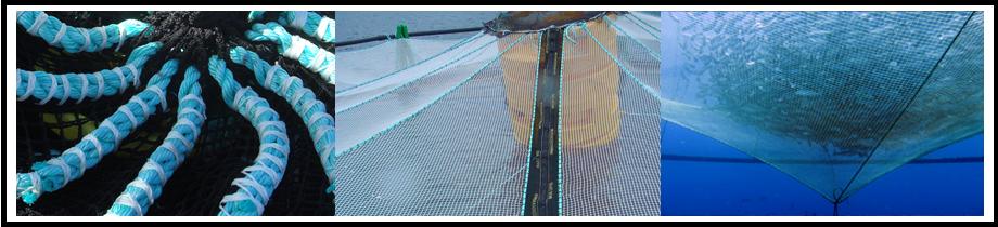 aquazur-aquaculture-pisciculture-filets