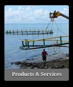 Aquazur-Menu-Products-Services