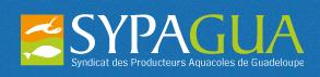 Logo-Sypagua